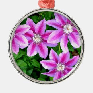 Rosa Clematis und wildes Oregano Silbernes Ornament