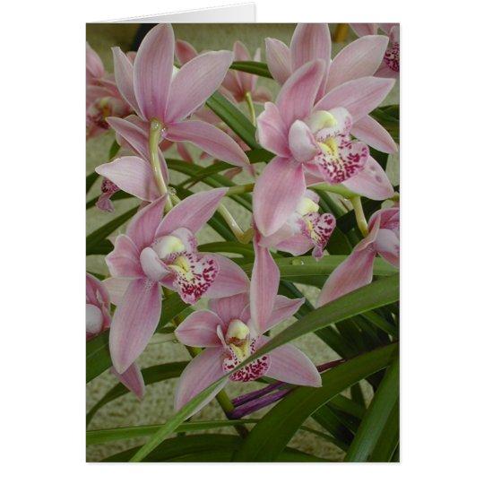 Rosa Cymbidium-Orchidee Grußkarte