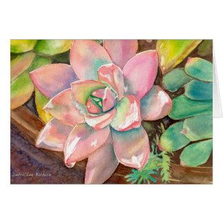 Rosa Echeveria Grußkarte durch Debra-Lee Baldwin