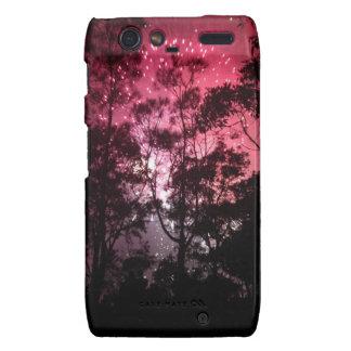 Rosa Feuerwerke durch die Silhouette der Bäume