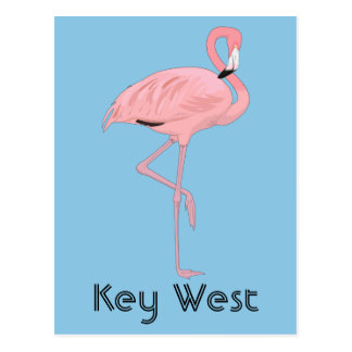 Rosa Flamingo Key Wests Florida Postkarte