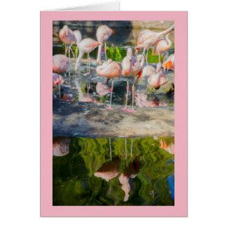 Rosa Flamingo-leere Gruß-Karte Karte