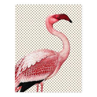 Rosa Flamingo und Vintage Polka-Punkte Postkarten