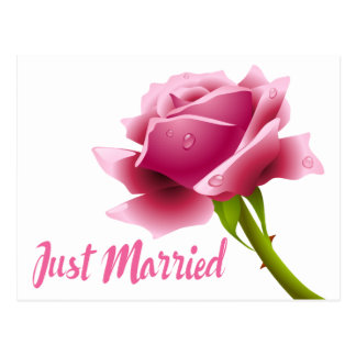 Rosa-gerade verheiratete postkarte