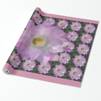 Pink Cacti Flower