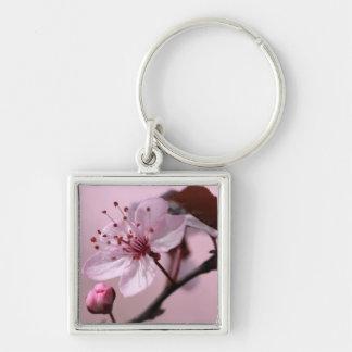 Rosa Kirschblüte Schlüsselanhänger