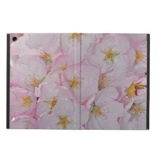 Rosa Kirschblüten ipad Luftkasten