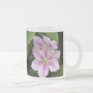 Rosa mattierte Glasart der Lilien-(Clematis) Mattglastasse