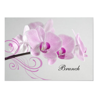 Rosa Orchideen-Eleganz-Posten-Hochzeits-Brunch Karte