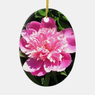 Rosa Pfingstrose Ovales Keramik Ornament
