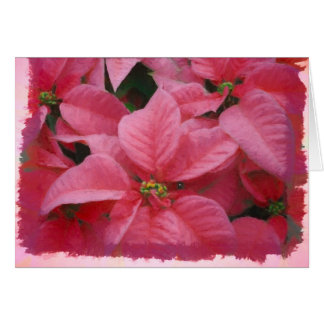Rosa Poinsettia-Weihnachtskarte Karte