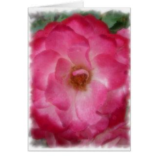 Rosa Rose Karte