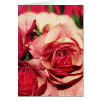 Rosa Rosen-Blumenstrauß-feine Kunst-Fotografie Karte