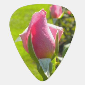 Rosa Rosen-Knospen-Plektrum Gitarren-Pick