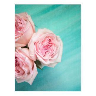 Rosa Rosen und aquamariner Hintergrund Postkarte