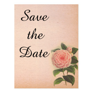 Rosa rustikales Save the Date Wedding Mitteilung Postkarte