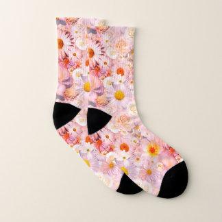 Rosa Socken