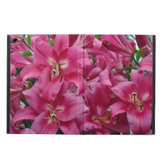 Rosa Stargazerlilien