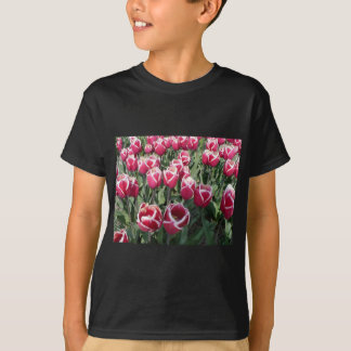 Rosa Tulpen von Holland T-Shirt