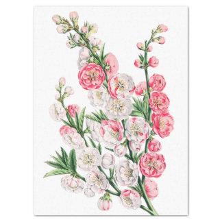 Rosa und weiße Blume sprüht Seidenpapier