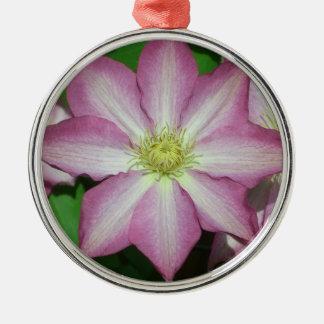 Rosa und weiße Clematis-Frühlings-Blume Rundes Silberfarbenes Ornament
