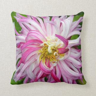 Rosa und weißes Dahlie-Blume Throwkissen Kissen
