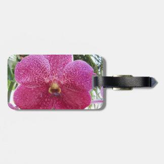 Rosa Vanda-Gepäckanhänger Gepäckanhänger