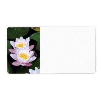 Rosa Wasser-Lilien-Blumen-Adressen-Etiketten