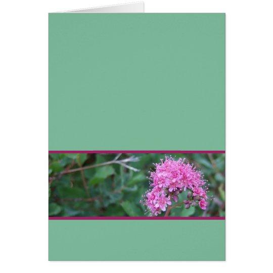 Rosa Wildblume-Gruß-Karte Grußkarte