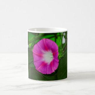 Rosa Winde in der Blüte auf dunkelgrünem Foto Kaffeetasse