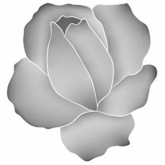 Rose assez pâle de gris photo en relief