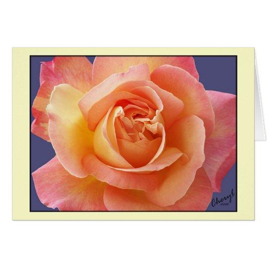 Rose in der Blüte Karte