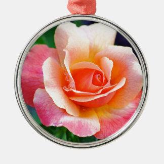 Rose in der vollen Blüte Rundes Silberfarbenes Ornament