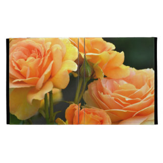 Rose romantique de pêche floral coques iPad folio