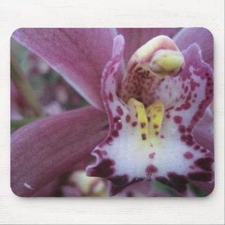 Rosecymbidium-Orchidee Mousepad