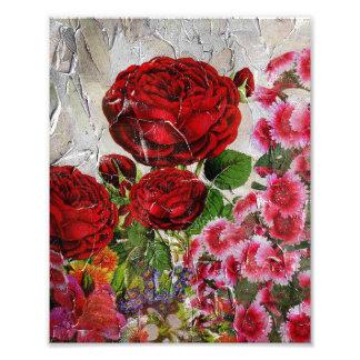 Rosen-Blumen-Garten Fotodruck