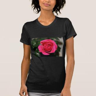 Rosen-Rot T-Shirt