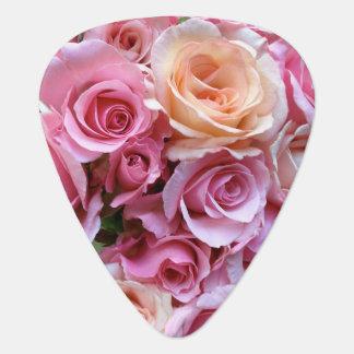 Rosen vereinbart plektron