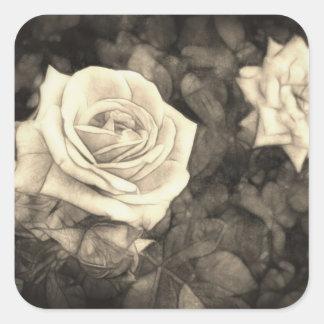 Roses roses dans Anzures 1 Antiqued Autocollants Carrés