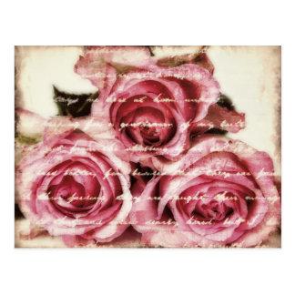 Roses roses vintages cartes postales