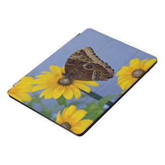Rosskastanien-Schmetterling auf gelbem iPad Pro Cover