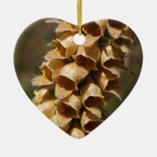 Rostige Fingerhut (Fingerhut ferruginea) Keramik Herz-Ornament