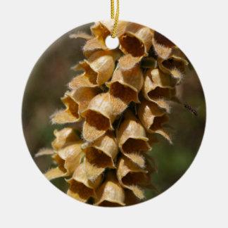 Rostige Fingerhut (Fingerhut ferruginea) Keramik Ornament