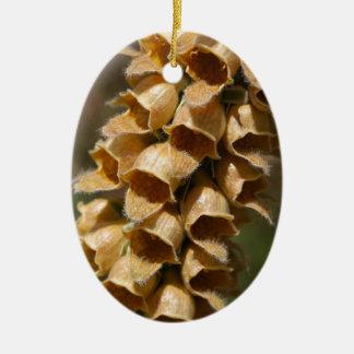 Rostige Fingerhut (Fingerhut ferruginea) Ovales Keramik Ornament