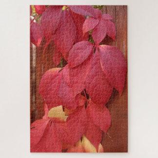 Rot-Blätter auf dem Zaun