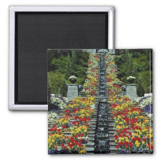 Rot im Park, Mainau Blumen Quadratischer Magnet