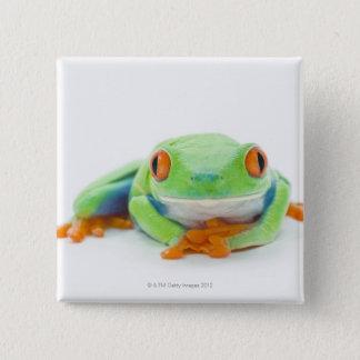 Rot-Mit Augen Baum-Frosch (Agalychnis Callidryas) Quadratischer Button 5,1 Cm