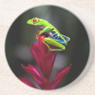 Rot-mit Augen Baum-Frosch Sandstein Untersetzer