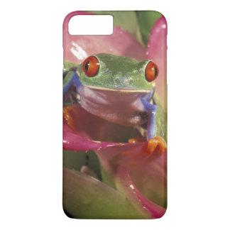 Rot-mit Augen Baumfrosch Agalychnis callidryas) iPhone 8 Plus/7 Plus Hülle
