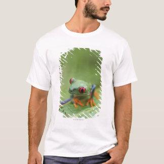 Rot-mit Augen Baumfrosch (Agalychnis callidryas) T-Shirt